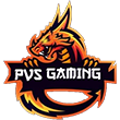 PVS GAMING ESPORTS